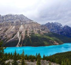 Is Peyto Lake Really That Blue?
