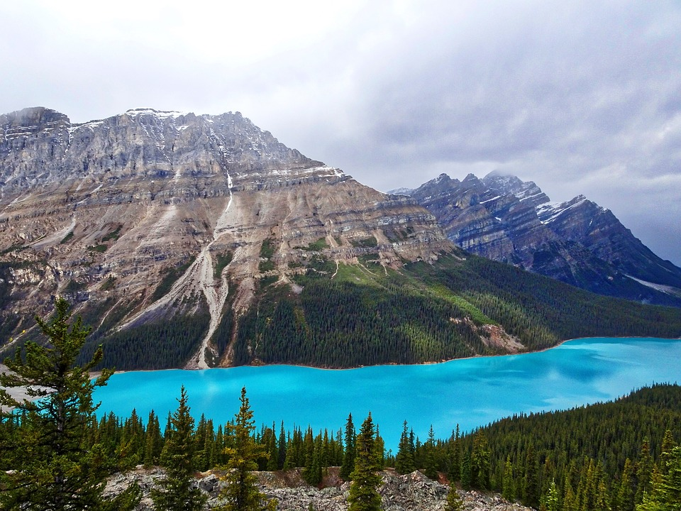 Lake Peyto is place with the most blue water